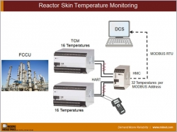 Reactor Skin Temperature Monitoring